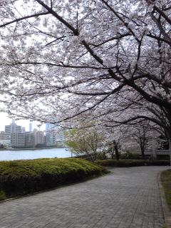 春のうららの隅田川09